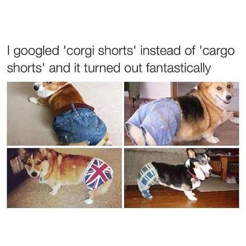 sparkling Funny Memes