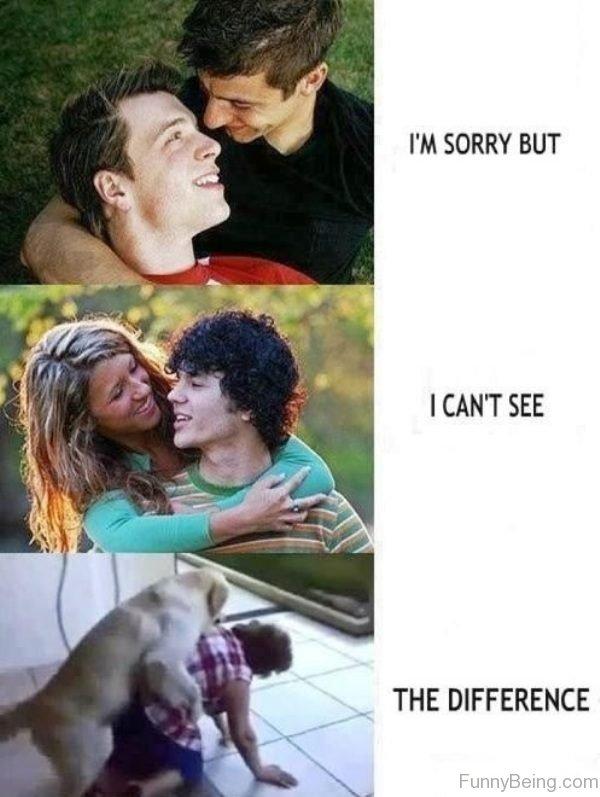 Hilarious Love Memes