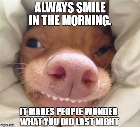 amusing Good Morning Memes