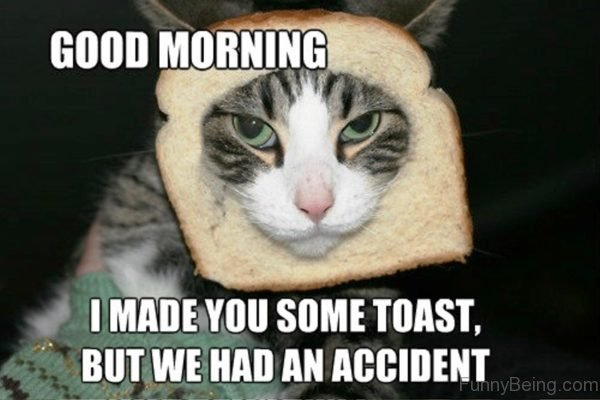 entertaining Good Morning Memes