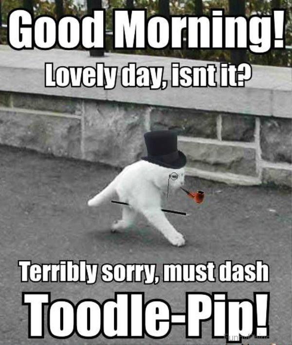rib-tickling Good Morning Memes