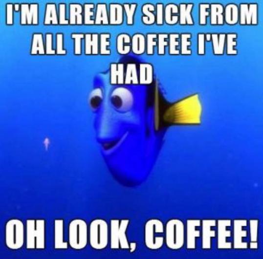 droll, Coffee Memes