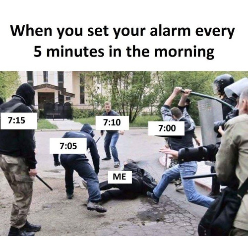 droll, Funny Memes