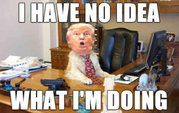 high-spirited Trump Memes