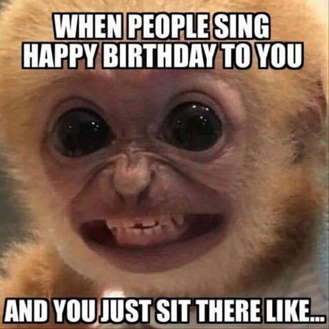 merry Birthday Memes