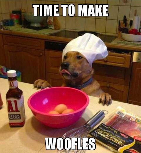 rowdy Dog Memes
