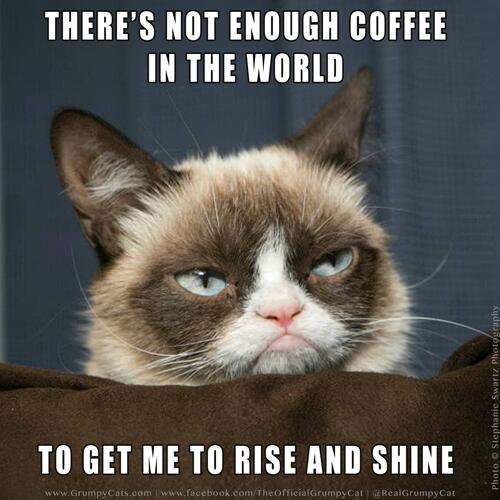 vivacious Coffee Memes