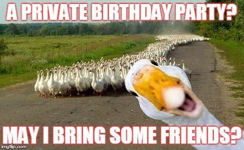 witty Birthday Memes