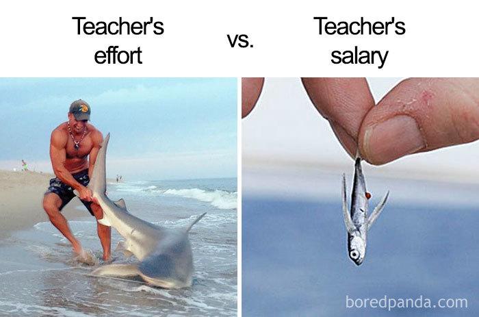 Hilarious Teacher Memes
