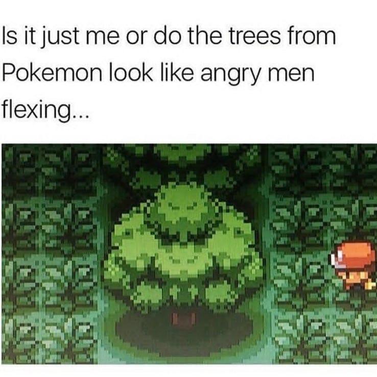 amusing Pokemon Memes