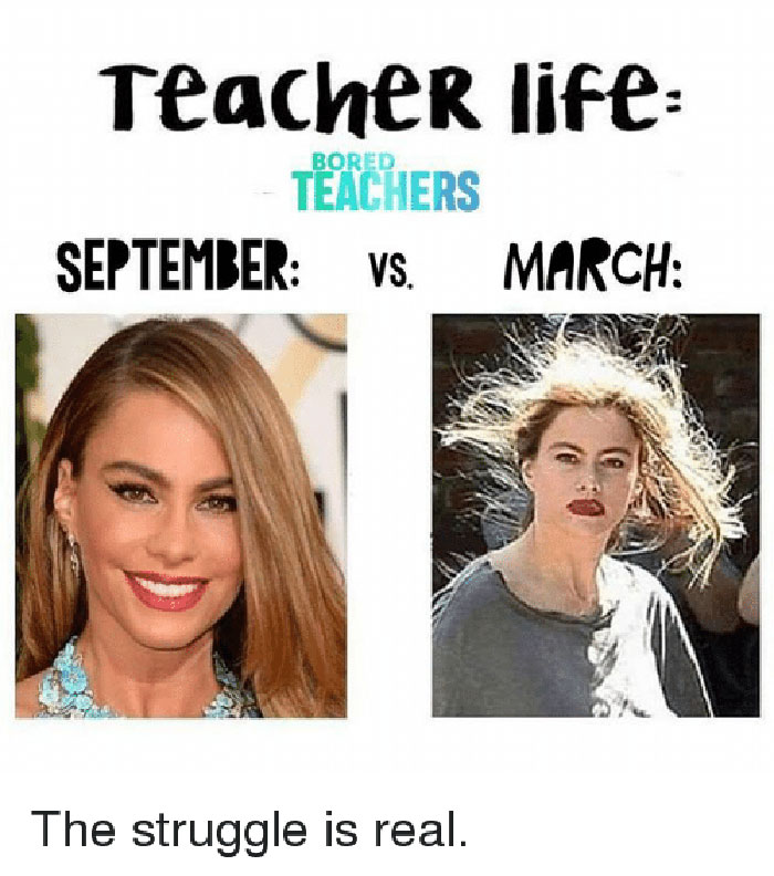 animated, Teacher Memes