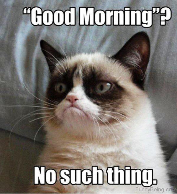 farcical Good Morning Memes