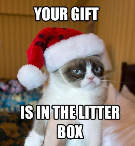 Christmas Memes Funny.100 Funny Christmas Memes That Will Make Go Crazy Laughing