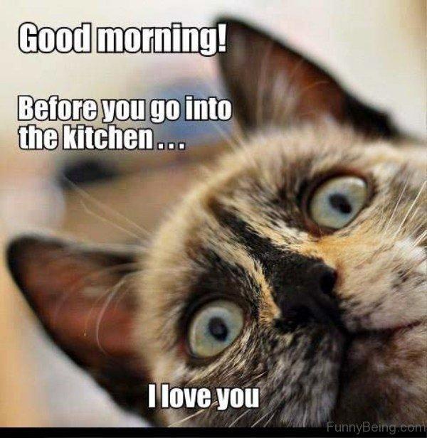 humorous Good Morning Memes