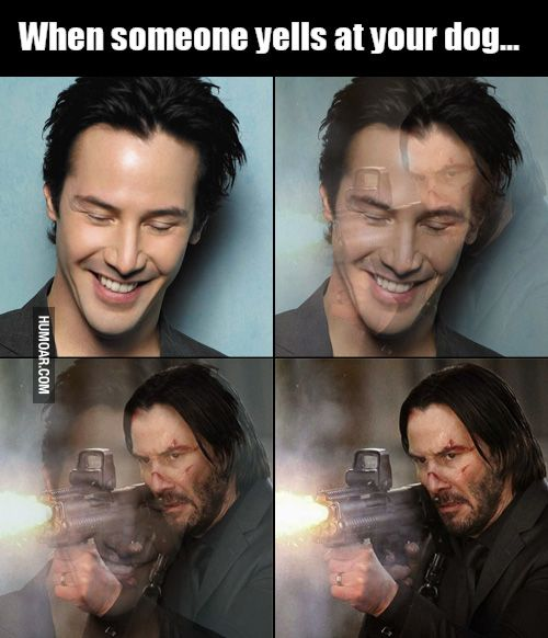 Image result for Keanu Reeves Hilarious Funny Memes From 'John Wick'