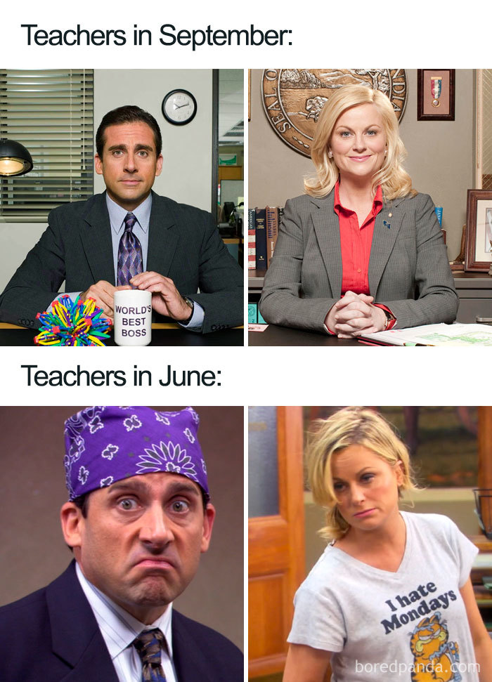 laughable Teacher Memes