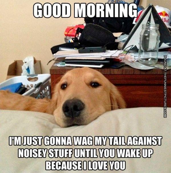 lively Good Morning Memes