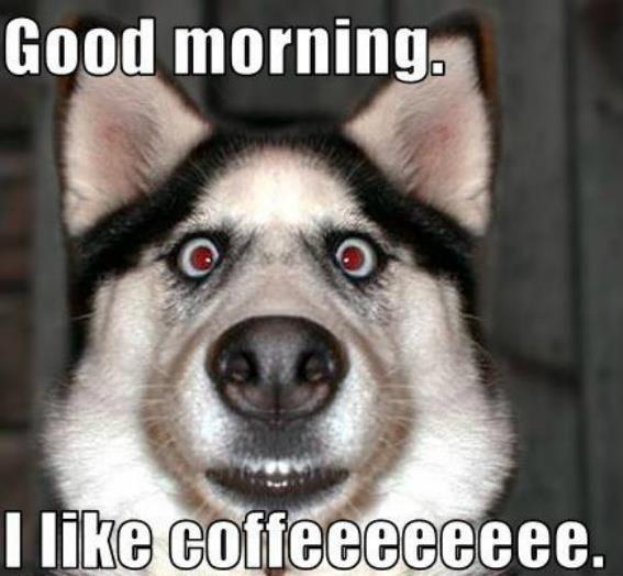 noisy Good Morning Memes