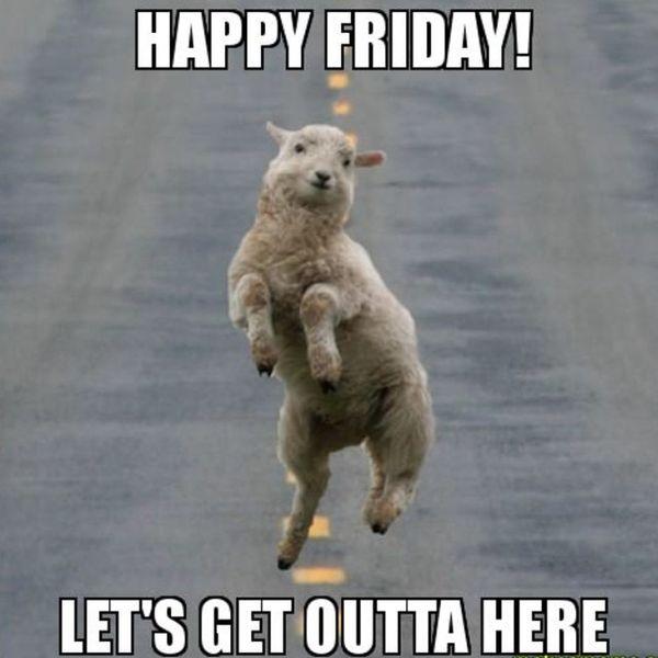 rowdy Friday memes