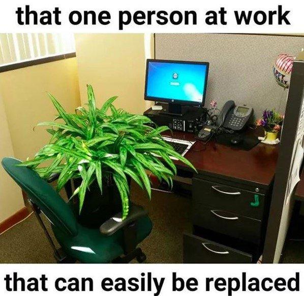 side-splitting Work Memes