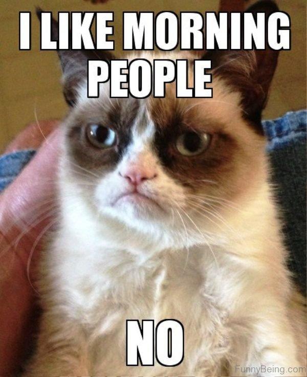 uproarious Good Morning Memes