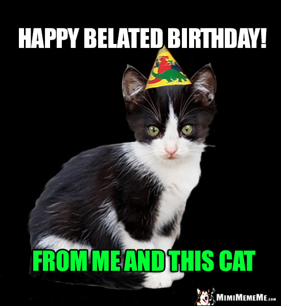 85+ Funny Belated Birthday Meme That Will Make You ...