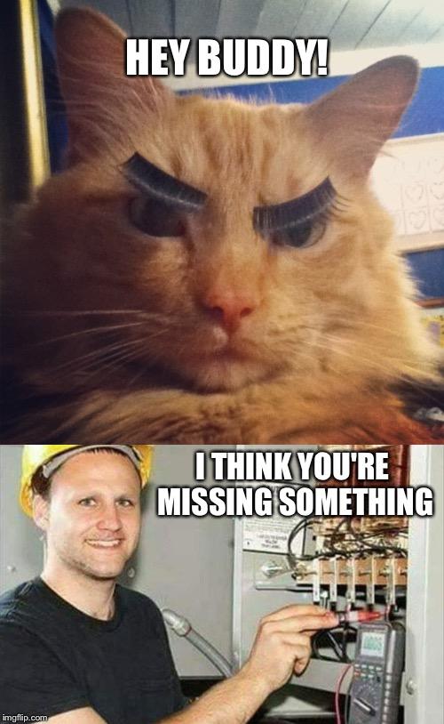 Hilarious Electrician memes