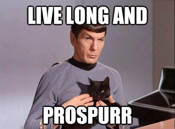entertaining Star Trek Memes