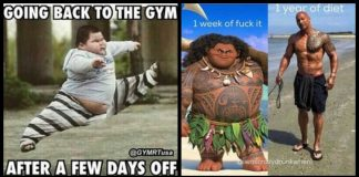 115+ Fitness Memes To Recharge and Renew