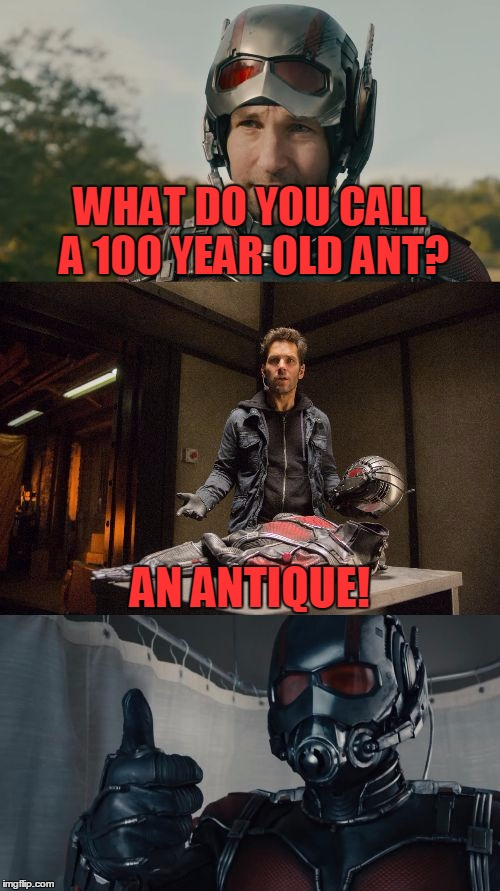 100 Funny Ant Man Memes About The Miniscule Super Hero