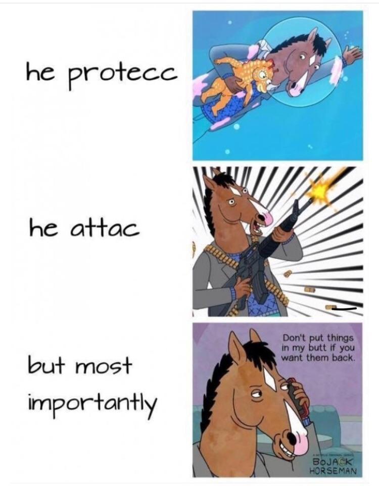 Hilarious BoJack Horseman memes