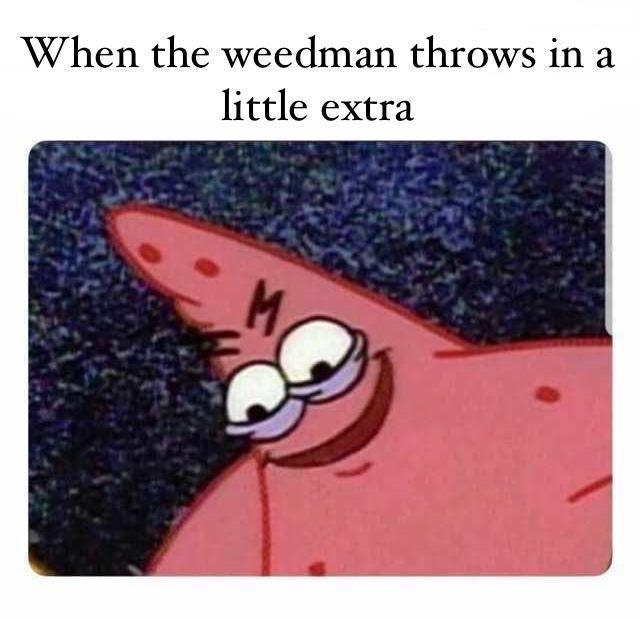 Hilarious Evil patrick meme