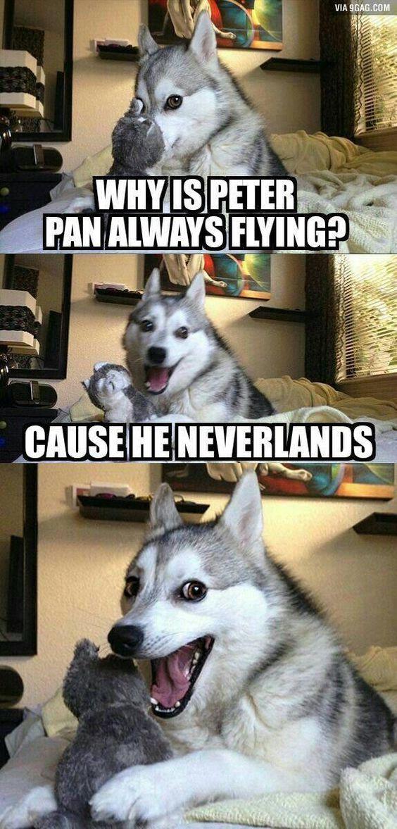 Hilarious Life memes