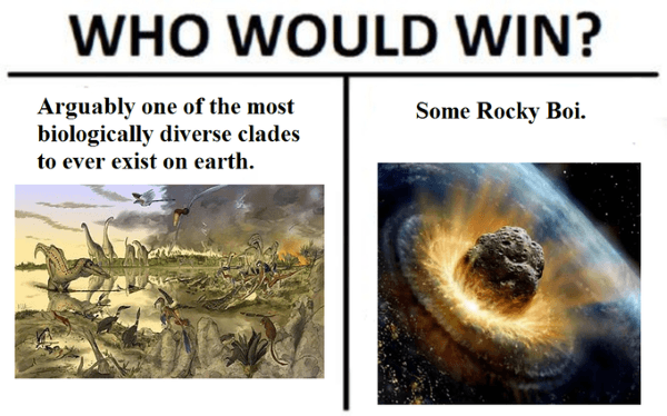 amusing who would win memes