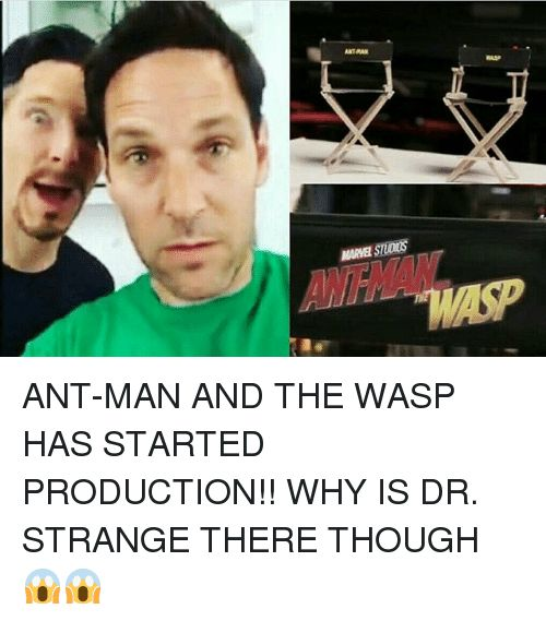 animated ant-man memes