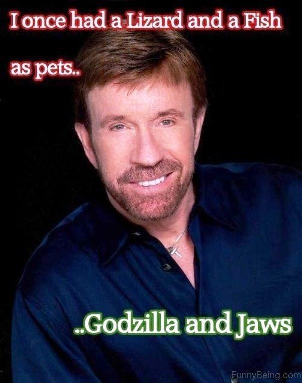 cheerful Chuck norris memes