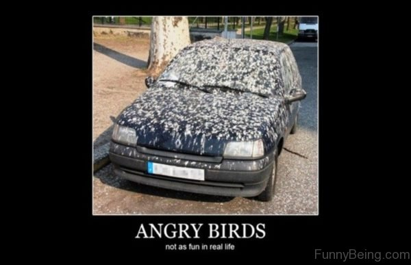 chucklesome Car memes