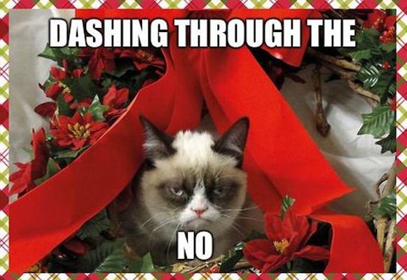 chucklesome Grumpy cat memes