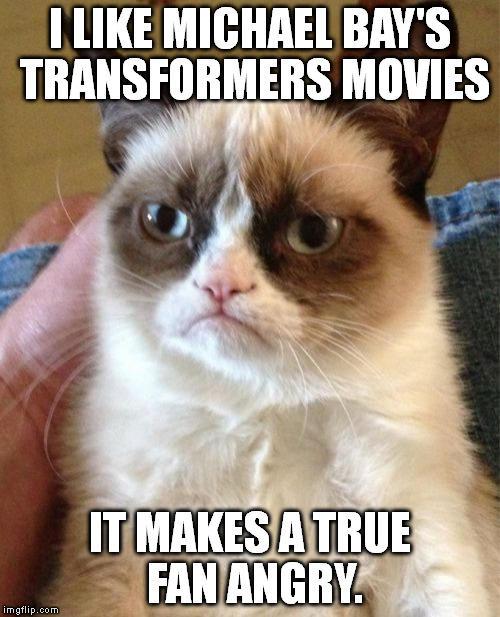 comic Grumpy cat memes