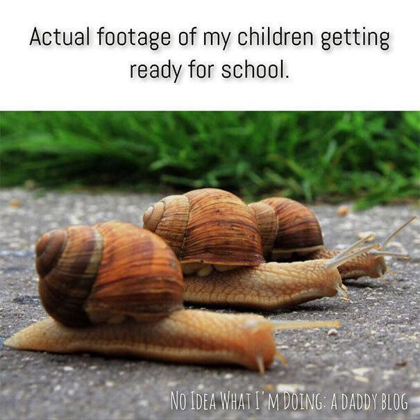 comic Mom memes