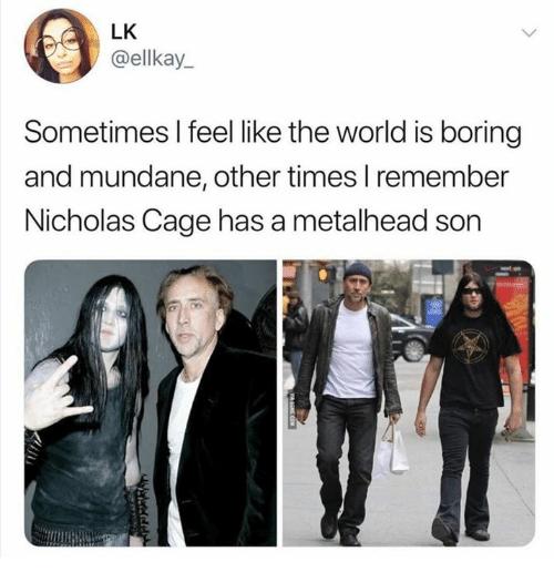 comic nicolas cage memes