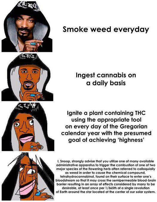 comic verbose memes