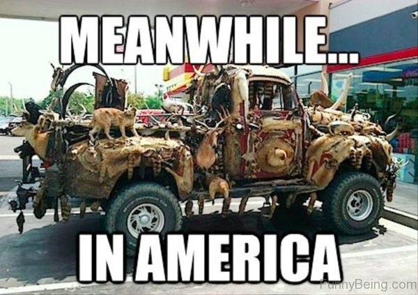 comical america memes