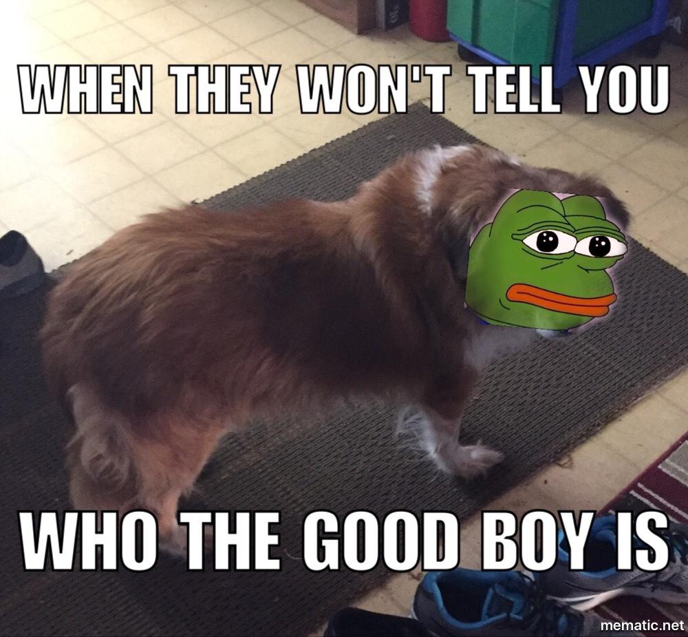 droll, Pepe the frog memes