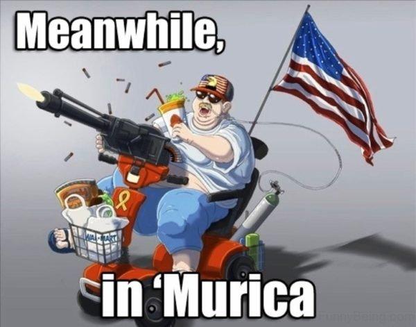 droll, america memes