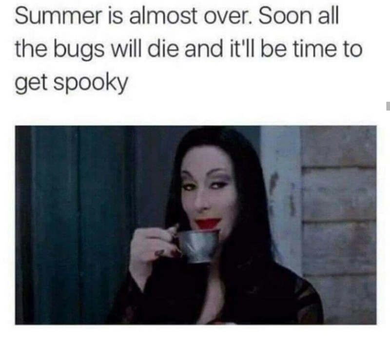 100+ Funny Halloween Memes Sure To Give You A Spook , GEEKS