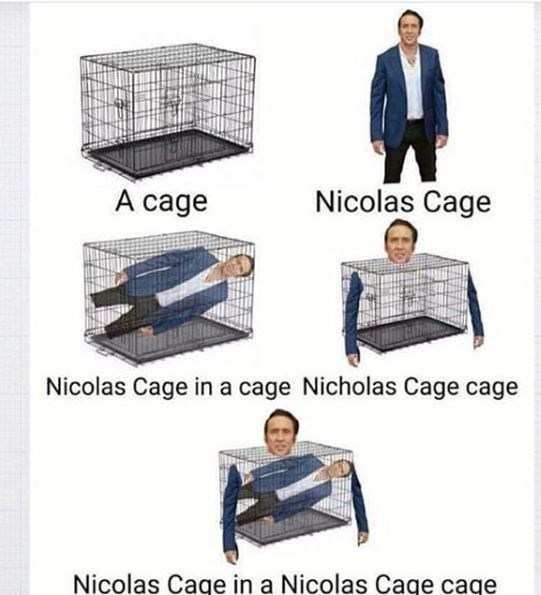droll, nicolas cage memes