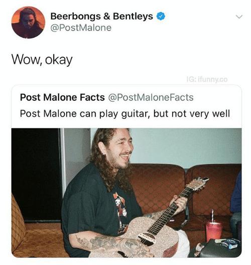 entertaining Post malone memes