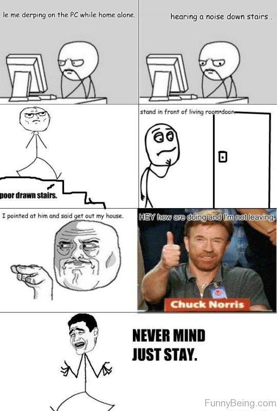 high-spirited Chuck norris memes