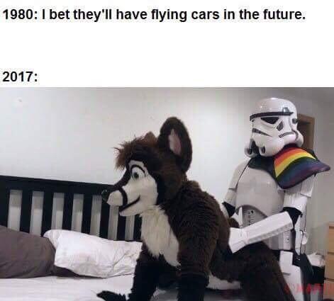 high-spirited Furry memes